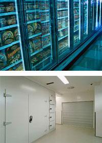 Kühlraumbau